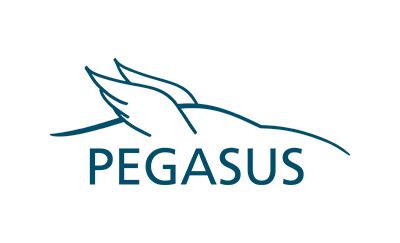 PEGASUS symposium