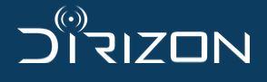 logo DIRIZON